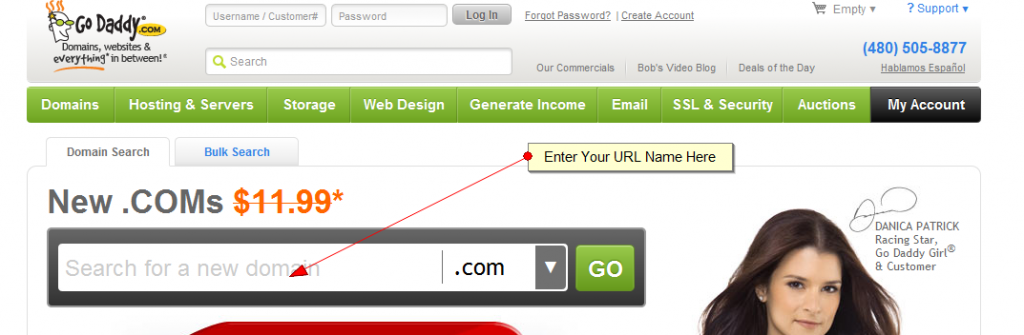 How to buy your website name